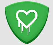 cure_heartbleed